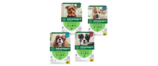 Advantage® II 6 Pack Dog coupon