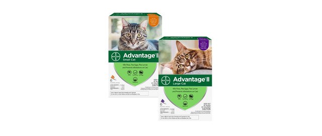 Advantage® II 6 Pack Cat coupon