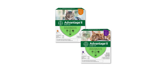 Advantage® II 4 pack Cat coupon