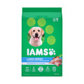 Food Pyramid_IAMS™ Dry Dog Food_coupon_53681