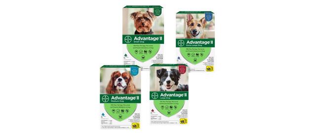 Advantage® II 6 pack Dog coupon