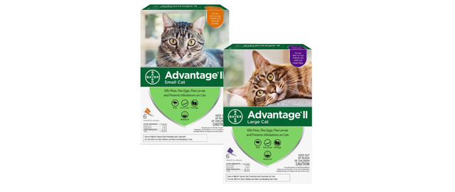 Advantage® II 6 pack Cat coupon