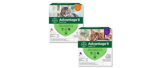 Advantage® II 4 pack Cat coupon