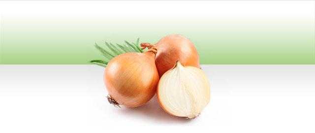 Onions coupon