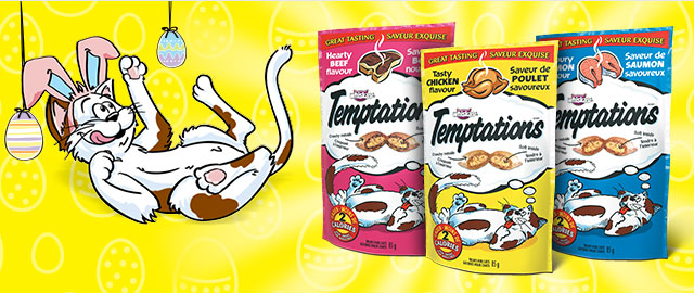 TEMPTATIONS® SAVOURY CAT TREATS coupon