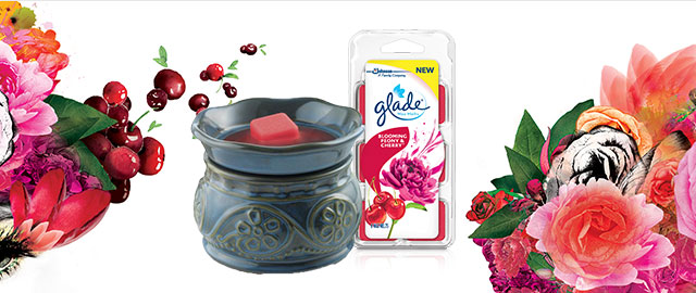 Combo: Glade® Wax Melts Warmer + Wax Melts Refills coupon