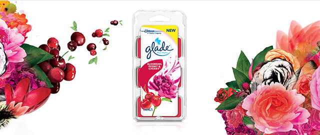 Glade® Wax Melts Refills coupon