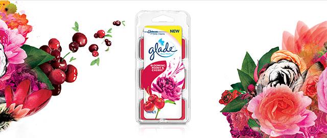 Glade® Wax Melts Refills coupon