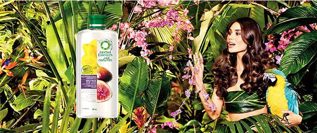 Herbal Essences Shampoo products coupon