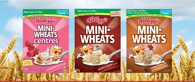Kellogg's Mini-Wheats*  coupon