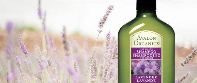 Avalon Organics® Shampoo coupon