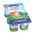 IGA_Stonyfield YoBaby Yogurt_coupon_24259