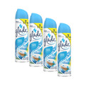 Food Basics_Buy 4: Glade® aerosols_coupon_28027