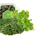 Choices Market_Lettuce, Kale, or Salad Mix_coupon_45457