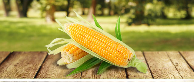 Your bonus offer: Corn coupon