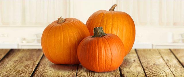 Pumpkins coupon