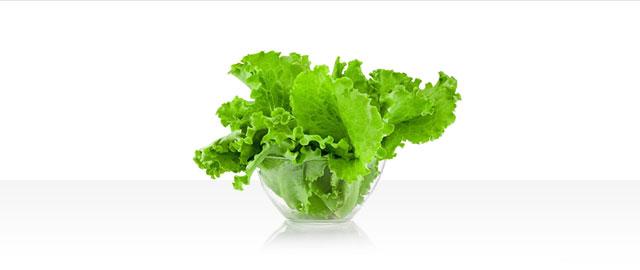 Lettuce coupon