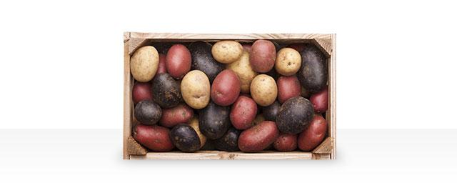 Potatoes coupon