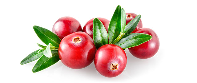 Fresh Cranberries coupon