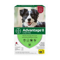 Redners/ Redners Warehouse Markets_Advantage® II Dog 6-Pack_coupon_47120