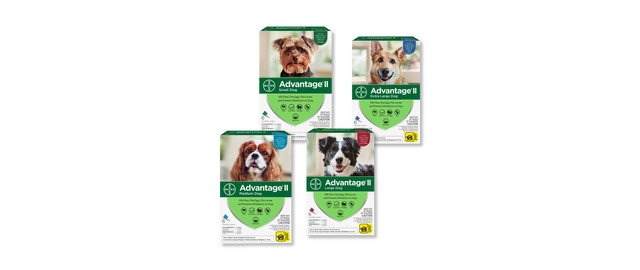 Advantage® II Dog 6-Pack coupon