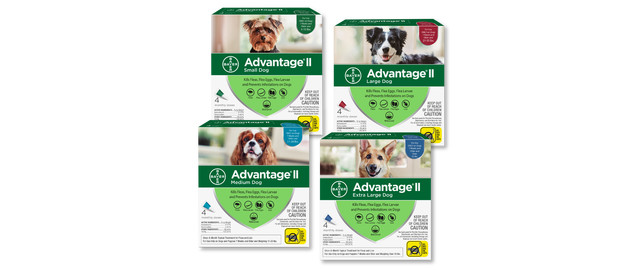 Advantage® II Dog 4-Pack coupon