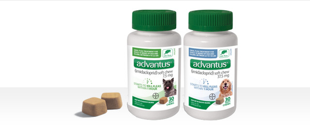 advantus® 30 ct coupon